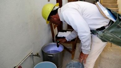 Exhorta SSM a prevenir enfermedades transmitidas por mosco Aedes aegypti