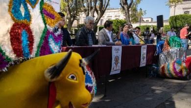 Festival del Torito de Petate 2019