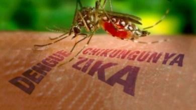 Reduce Salud transmisión de enfermedades como dengue, chikungunya y zika