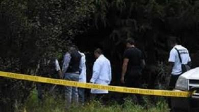 Encuentran 7 cadáveres en carretera a Ayotzitepec, Oaxaca