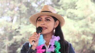 Garantizar que paridad sea efectiva en Michoacán, plantea Araceli Saucedo
