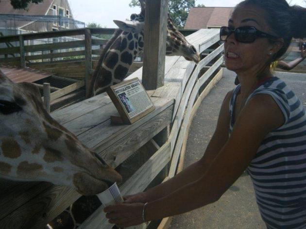 I love you Giraffe.  I'm such a natural with animals...