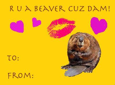 valentines day meme 3