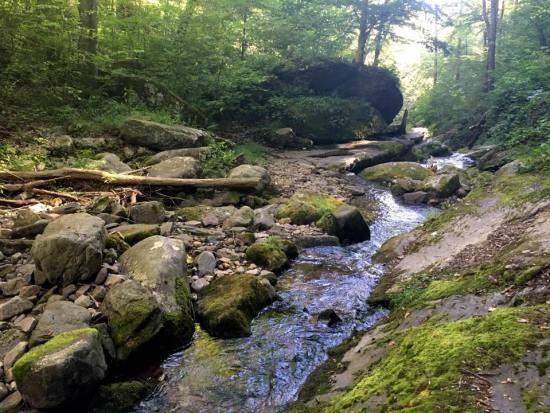hiking sunfish pond