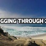 A Recap of 2016 LOLZ Blogging