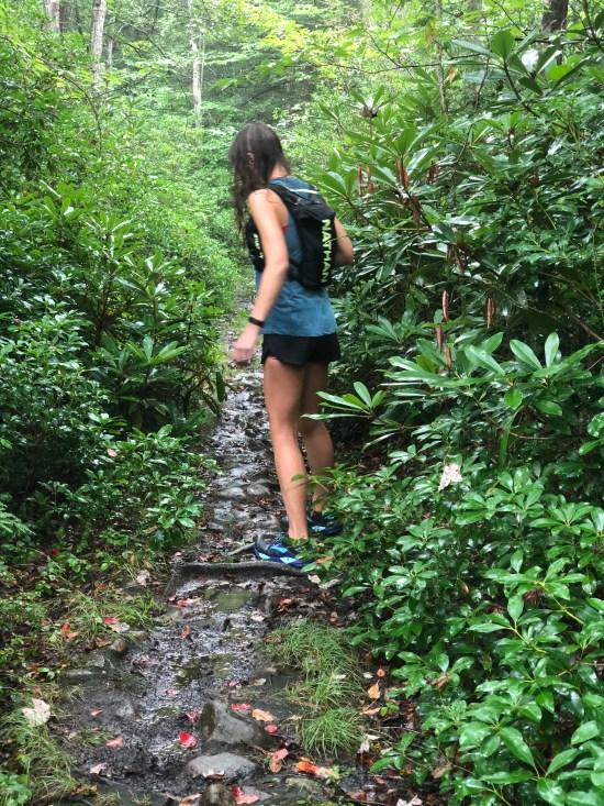 Hiking Hickory run park