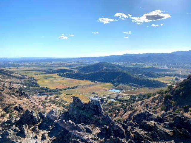 Views of Napa Valley Vineyards