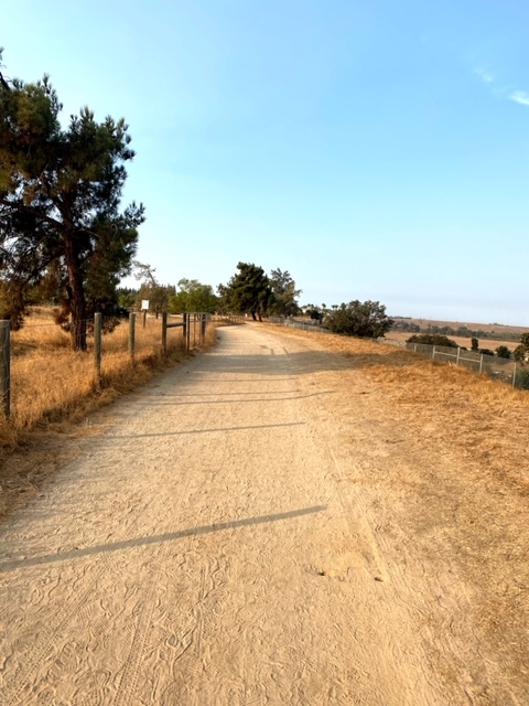 Exploring Woodward Park (Fresno)