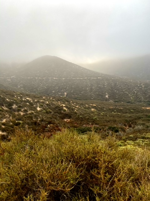 Pacific Crest Trail in San Francisquito Canyon