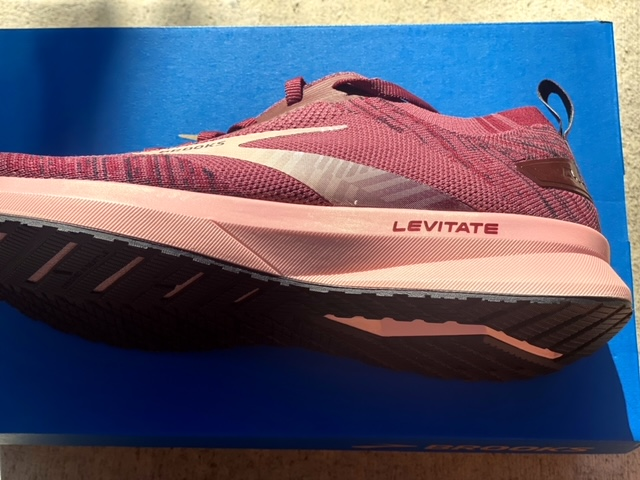 Brooks Levitate 4 Shoe Review