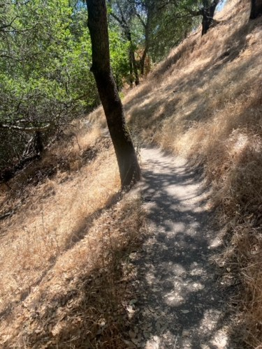 Getting Lost on the Middleridge Trail (Fair Oaks, CA)