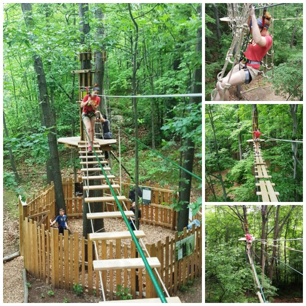 Go Ape - Tree Top