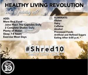 Shred10 Guidelines
