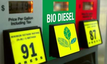 NATSO Testifies Before Congress on Biodiesel Policy
