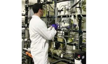 Successful Production of High-Octane Renewable Gasoline from Woody Biomass