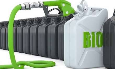 Updated Department of Energy Biodiesel Guide
