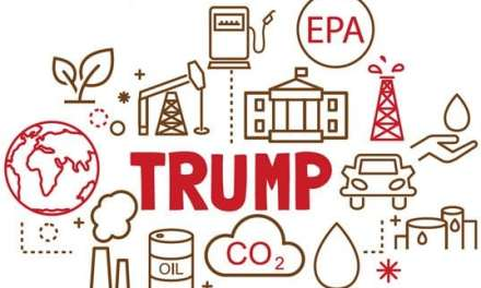 Policy Brief: Trump's Energy Policy One Year In