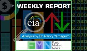 Exclusive weekly EIA Fuels Report analysis WTI Crude Gasoline