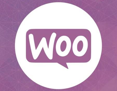 Best WooCommerce Themes for WordPress in 2015 WordPress Theme