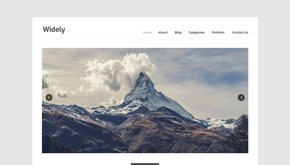WordPress portfolio themes: Widely