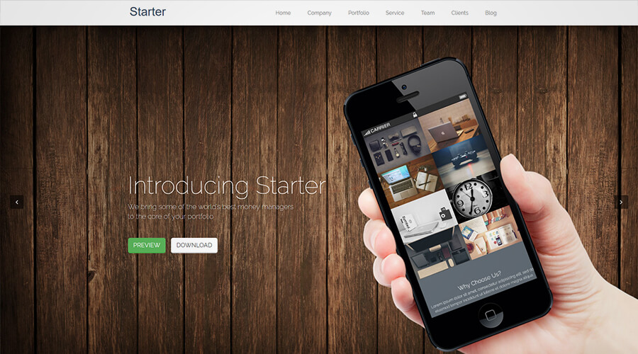 WordPress One Page Themes: Starter