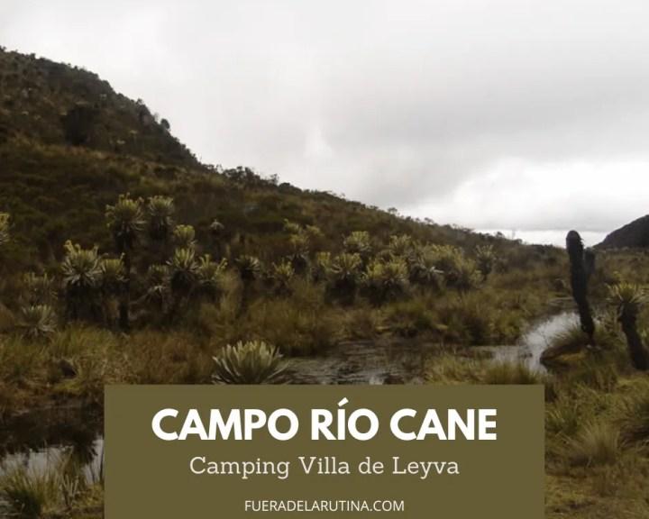 Campo Río Cane