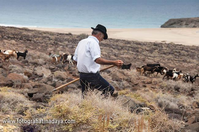 Las apañadas en Fuerteventura