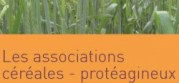 associations_de_cereales_et_de_proteagineux