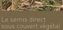 semis_direct_sous_couvert_vegetal