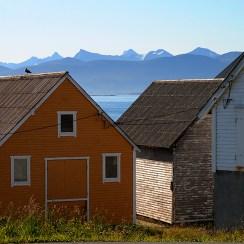 Runde. Foto: Knut Werner Alsén