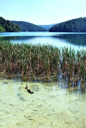 Plitvicze Lakes (2)
