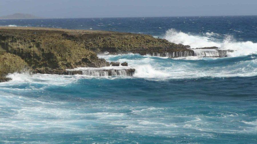 Bushiribana Aruba