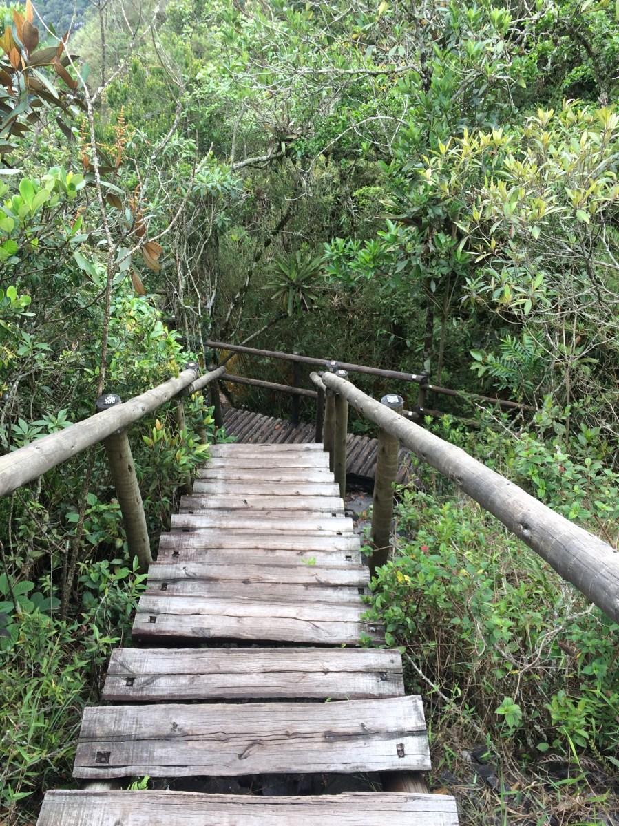 Escadas de acesso à Janela do Céu Parque Estadual do Ibitipoca