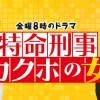 特命刑事カクホの女主題歌(OP/ED)挿入歌・サントラ(BGM)音楽情報