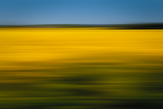 It won't be too long before rapeseed starts appearing. Here the ICM looks like I was driving past in a car