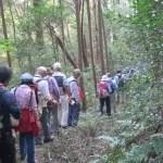 鎌倉街道を歩く会
