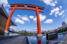 静岡県富士山世界遺産センターからの富士山