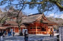 2019.2.1浅間大社拝殿
