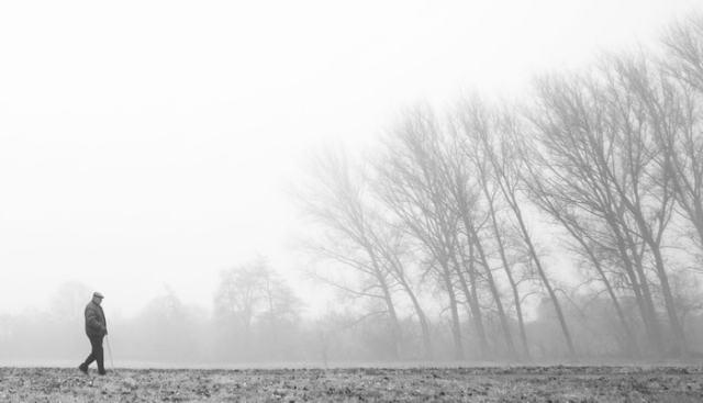 """""""Mañana de niebla, tarde de paseo"""" por Sergio Mora-Gil, con Fuji X-T1 + Samyang 12mm F2."""
