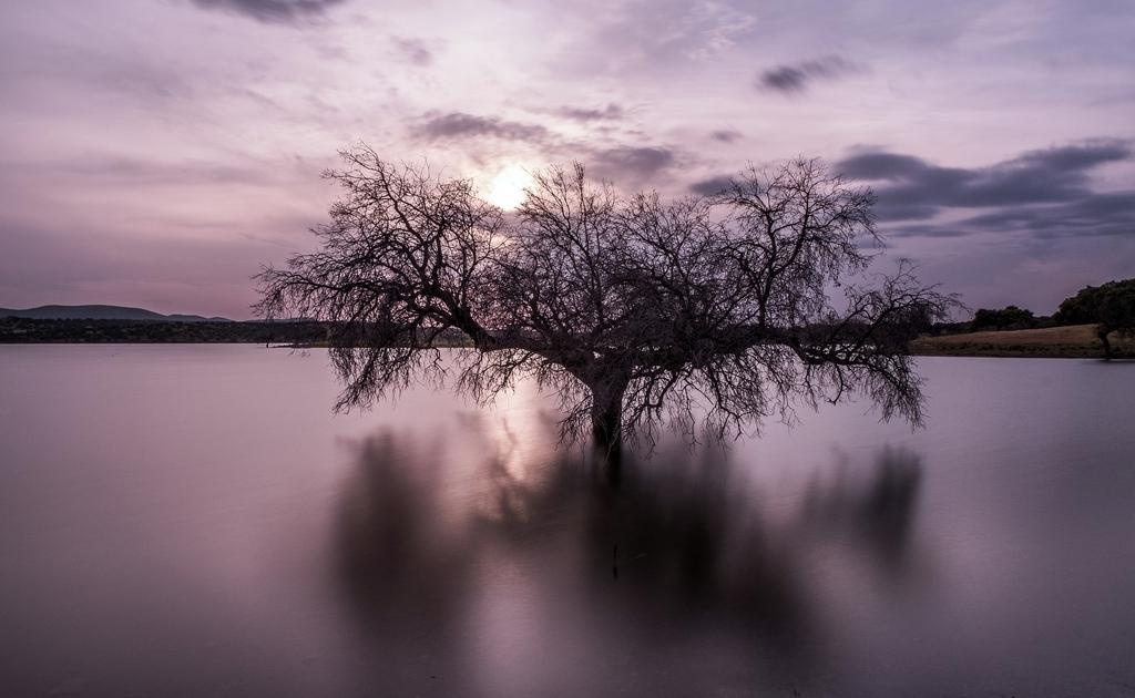 """""""Crepúsculo"""" por Ricardo Figueirido, con Fuji X-T2 + XF 16-55mm F2.8."""