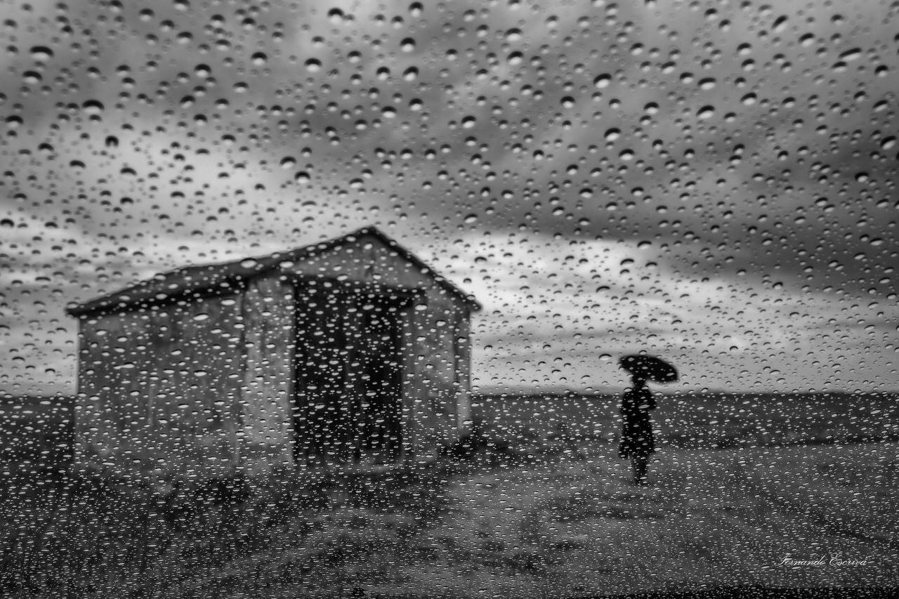 """Bajo la lluvia"" por Fernando Escrivá. Fuji X-T10 + XC 16-50mm."