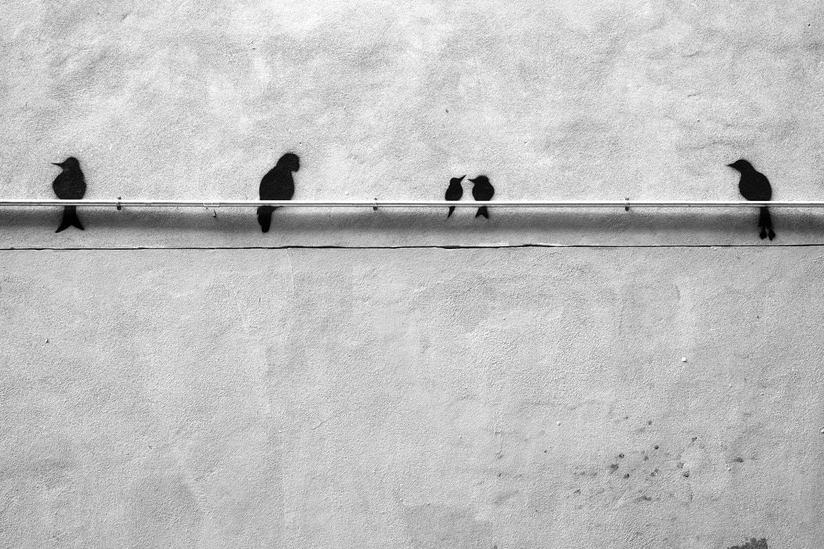 """Esperando a Hitchcock"" por Xavier Fedi. Fuji X-T2 + XF 35mm F1.4."