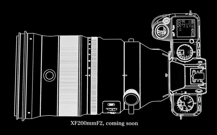 Fuji X-H1 + XF 200mm F2.