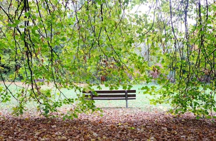 """""""Parque"""" por @peregrino.  Fujifilm X-E1 + Fujinon XF 23mm F1.4 R."""