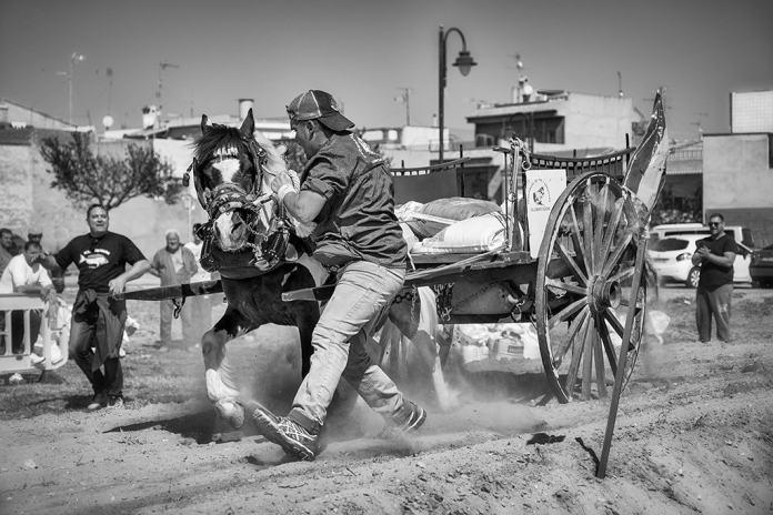 "Mención especial: ""Horsepower 2""por Paco Verdeguer (@fverds). Fuji X-H1 + Fujinon XF 16-55mm f/2.8 R LM WR"