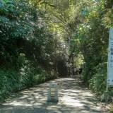 亀ヶ谷切通し~鎌倉の古道、鎌倉七口を歩く~