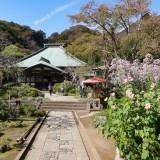不思議に満ちた十六井のある鎌倉 海蔵寺を歩く