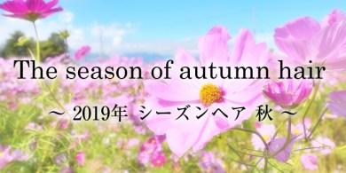 2019-aki
