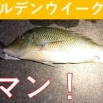 ゴールデンウィーク釣行(打ち込み編)