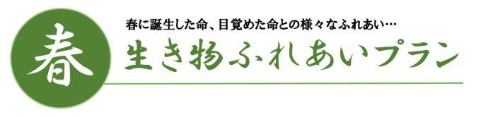 美山春ロゴ